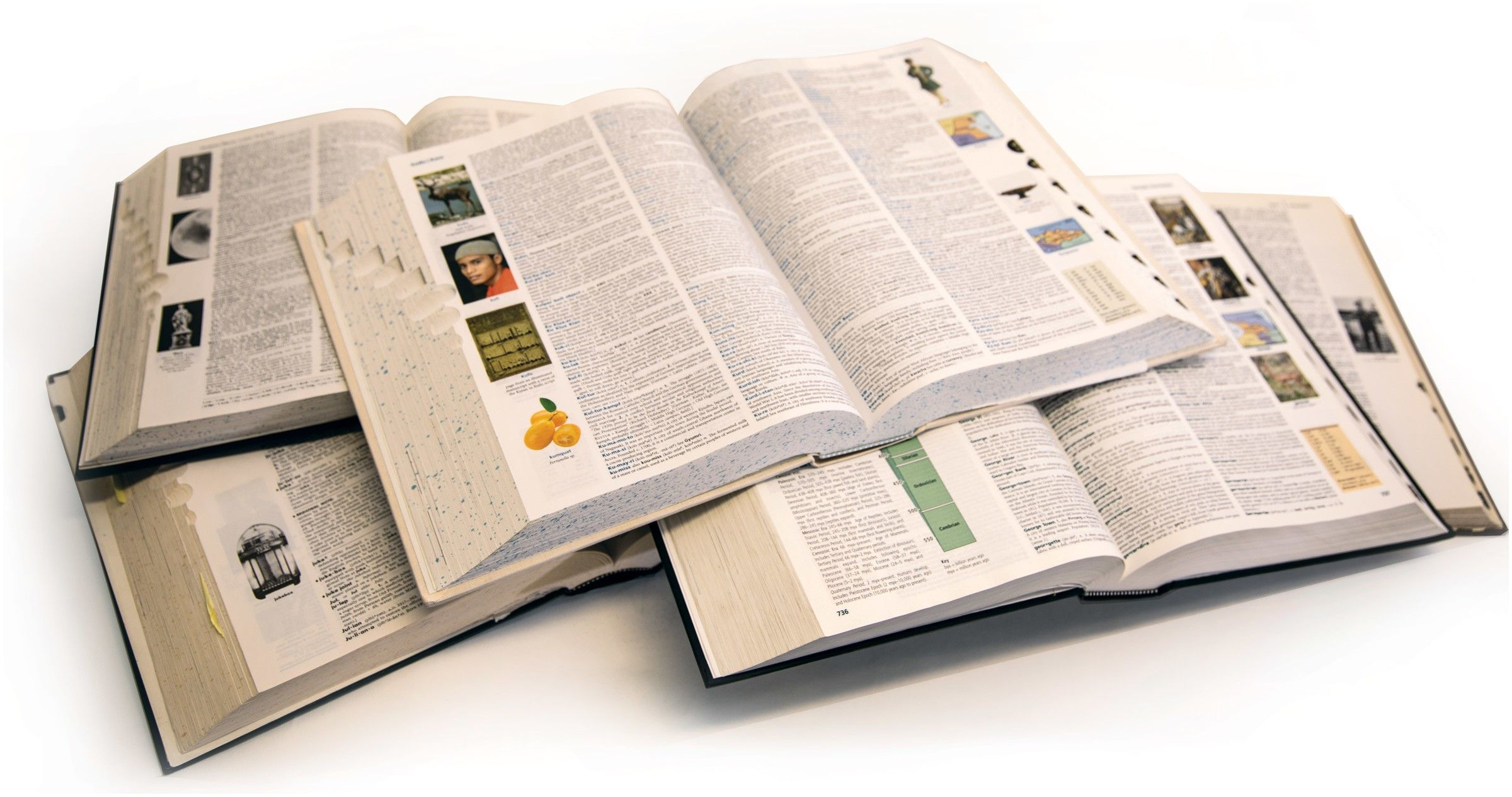 Every edition of the American Heritage Dictionary Color images first appeared in the