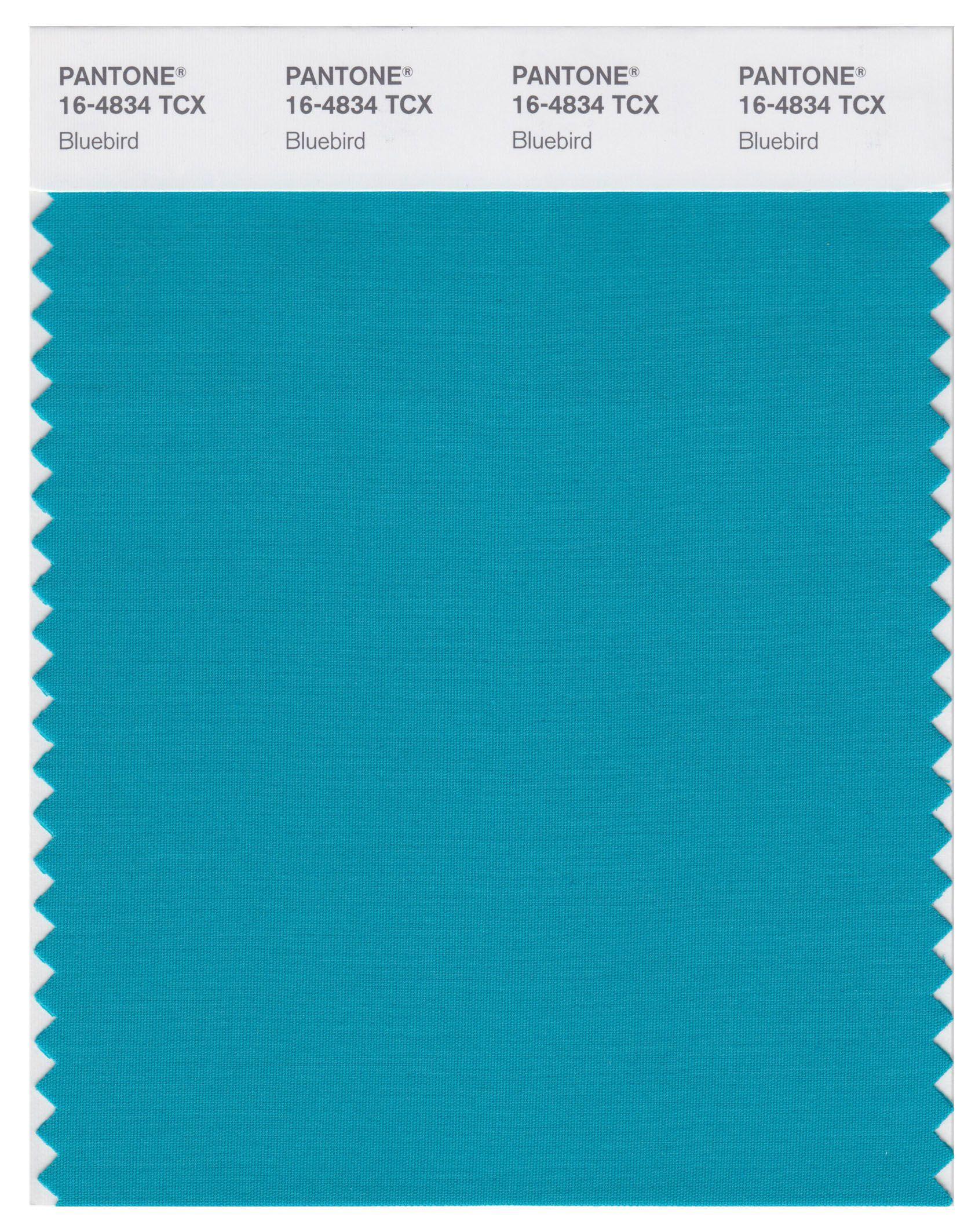 Pantone Smart 16 4834 TCX Color Swatch Card Bluebird